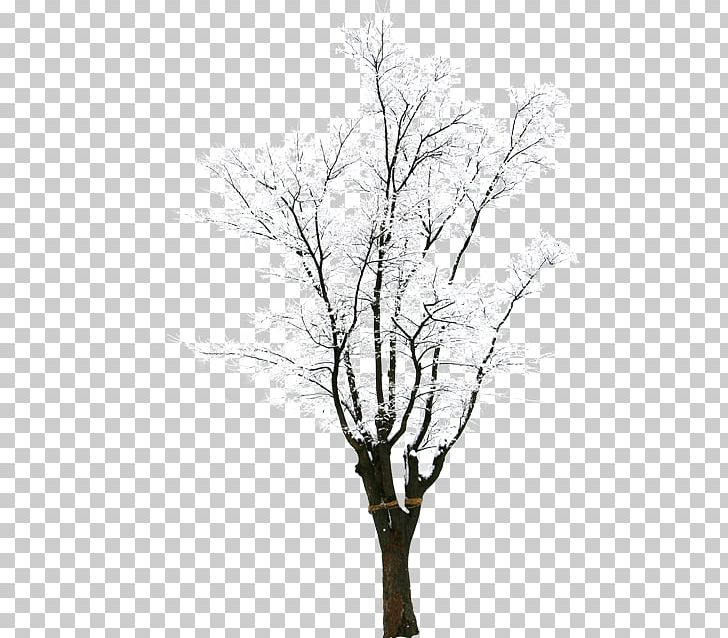 Twig Snow Tree Winter PNG, Clipart, Adobe Illustrator, Black.