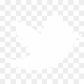 Free Twitter Bird Logo Transparent Png Transparent Images.