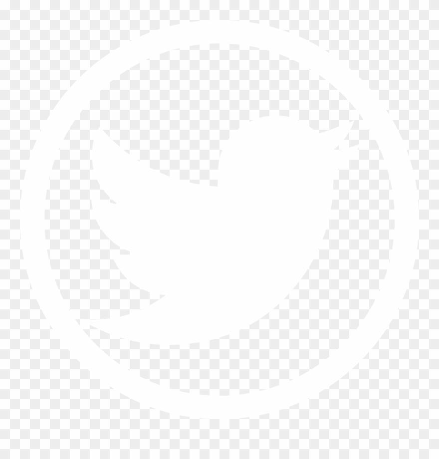 Social Media Twitter Glyph Icon.