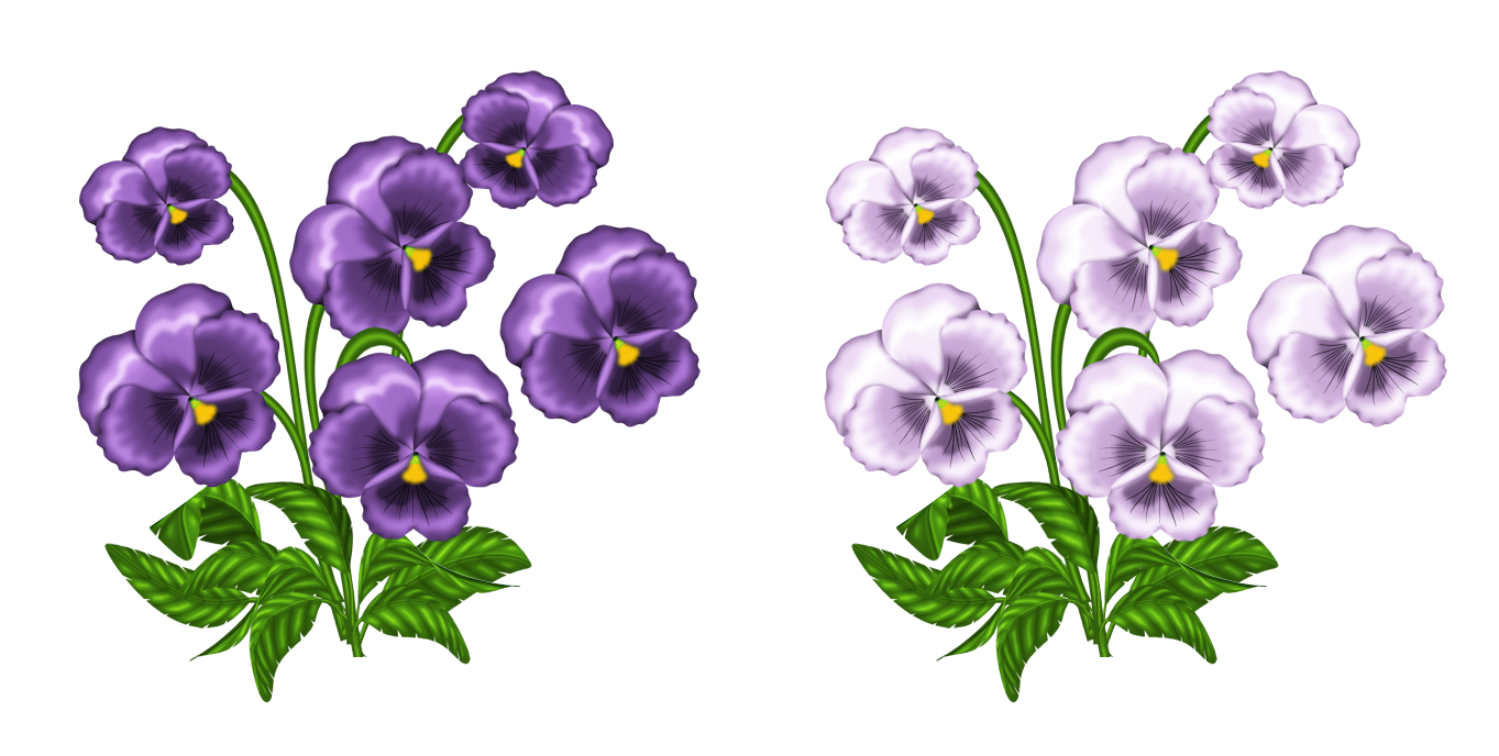 Purple and White Violets PNG Clipart.