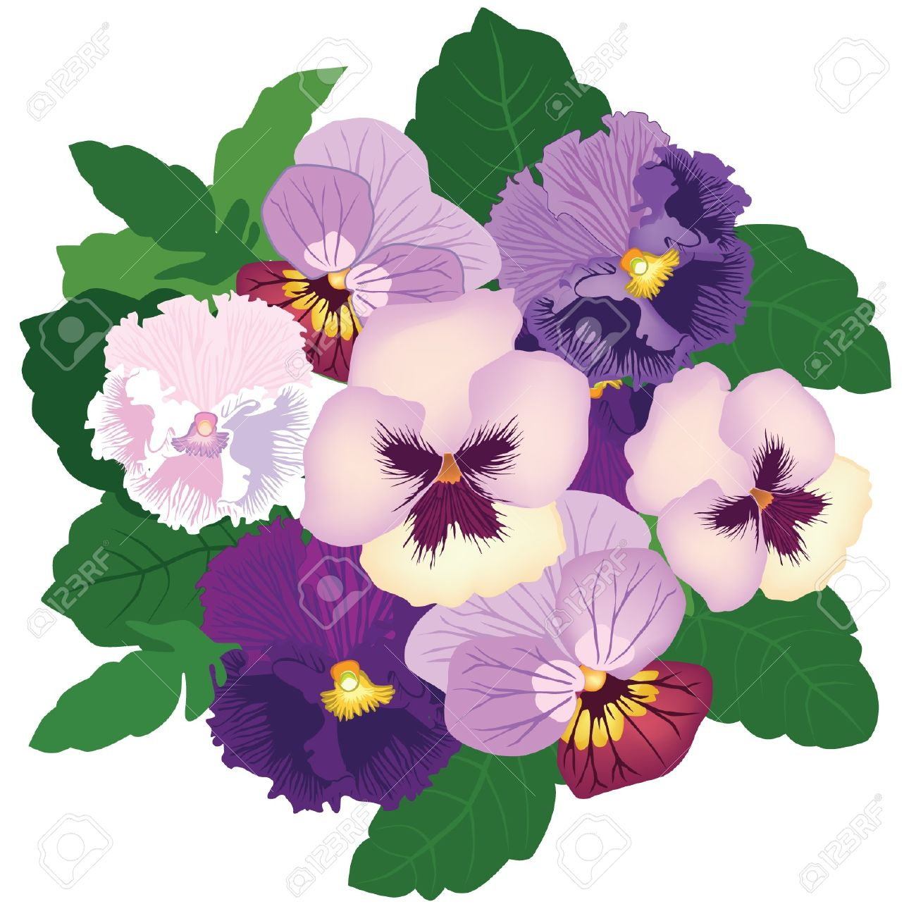 Bouquet From White, Violet And Lilac Pansy Royalty Free Cliparts.