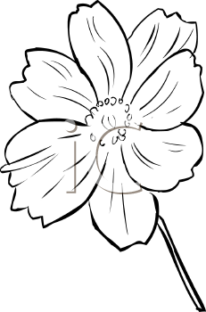 Violet Clipart Black And White.