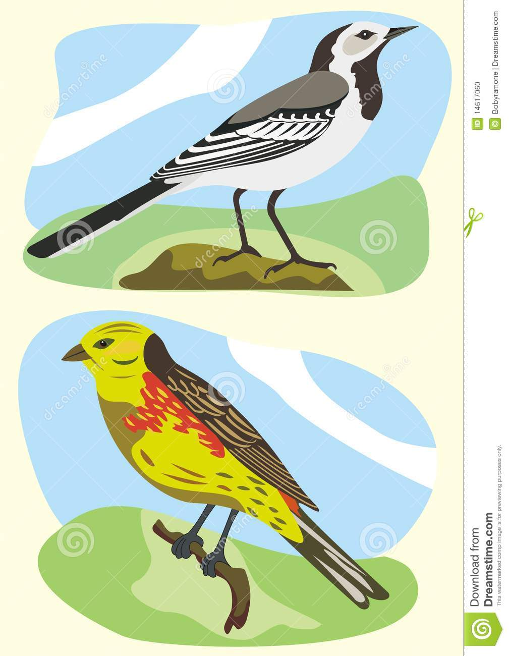 Birds White Wagtail And Yellowhammer Stock Photo.