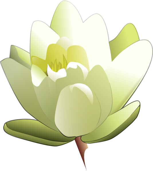 White Water Lily Clip Art at Clker.com.