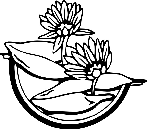 Water Lily clip art Free vector in Open office drawing svg ( .svg.