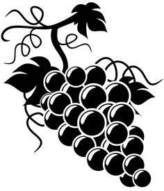 Grapes Images Clip Art Black And White