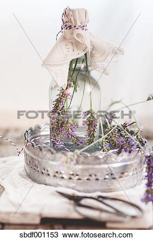 Stock Photo of Lavender vinegar, lavender blossoms with white wine.