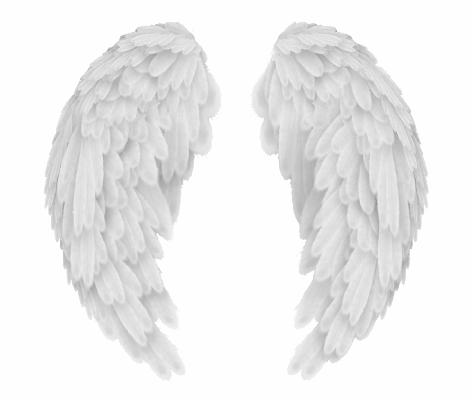 White Angel Wings Png Transparent Image Vector, Clipart,.