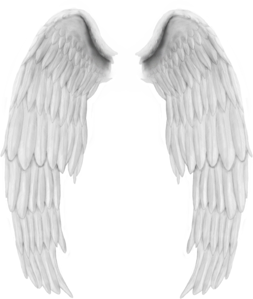 White Wings PNG High.