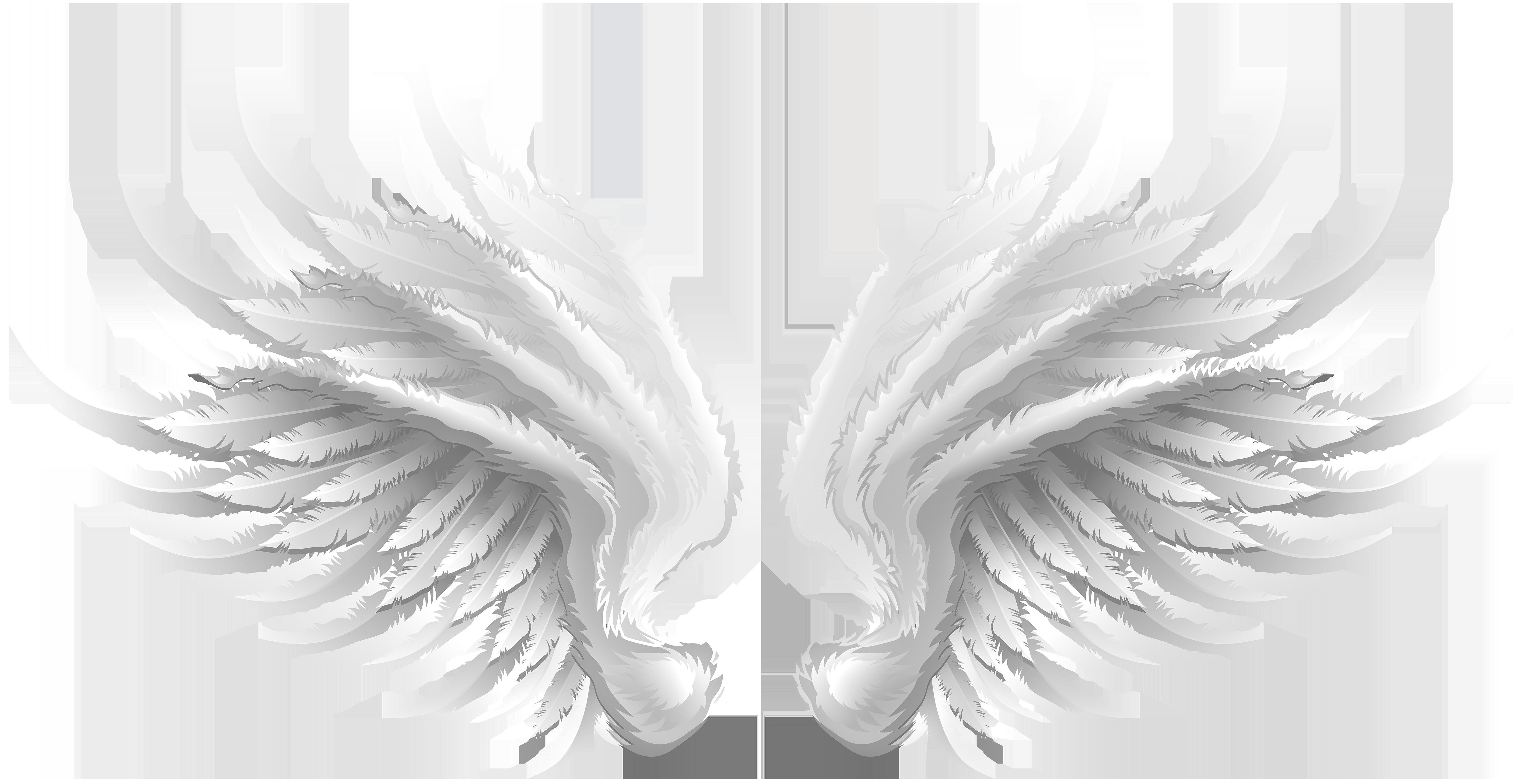White Wings Transparent Clip Art Image.