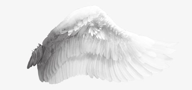 Angel Wings PNG, Clipart, Angel Clipart, Creative, Taobao Creative.