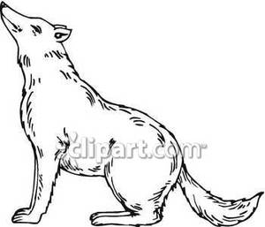 White wolf clipart.