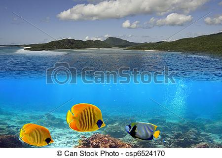 Stock Photography of Whitehaven Beach Underwater in the.