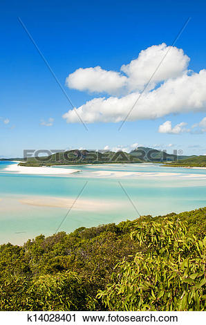 Stock Photography of Wonderful sea and forest of Queensland.