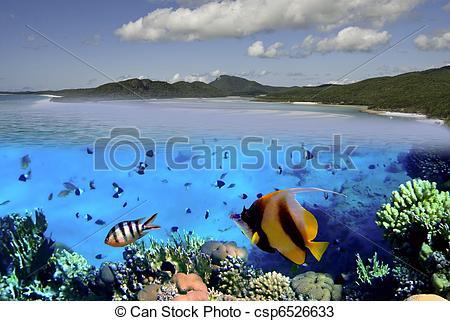 Stock Photos of Colors of Whitehaven Beach, Australia.