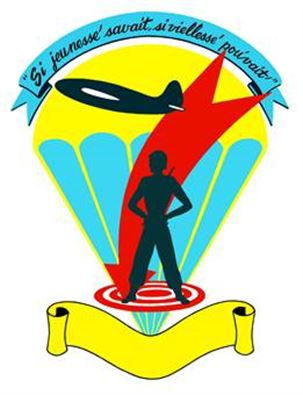 Shields reflect varying missions of 442nd > 442nd Fighter Wing.