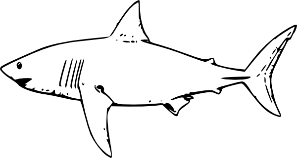 Great White Shark Clipart.