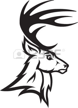 596 Whitetail Cliparts, Stock Vector And Royalty Free Whitetail.