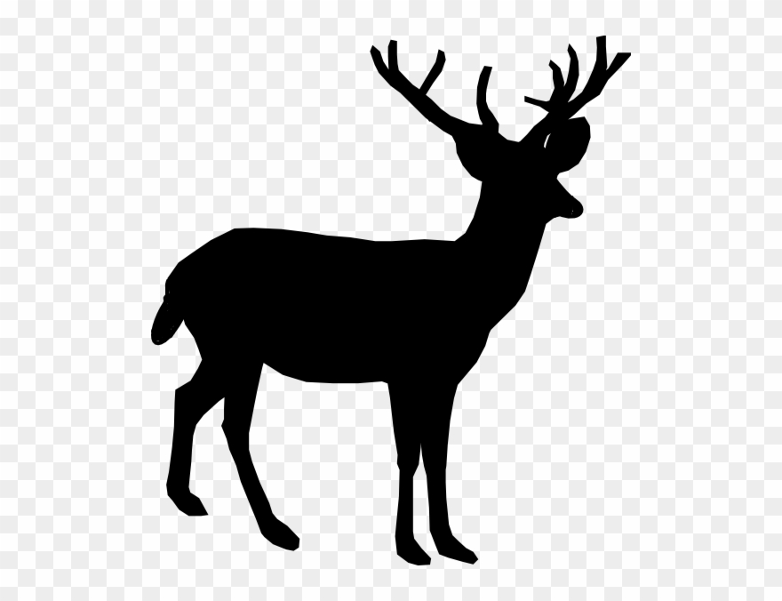 Jpg Freeuse Whitetail Deer Clip Art.