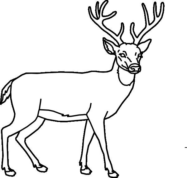 Deer Outline Clipart.