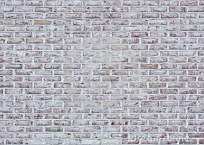 Brick Whitewashed Wall With White T.