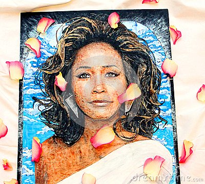 Whitney Houston Stock Illustrations.