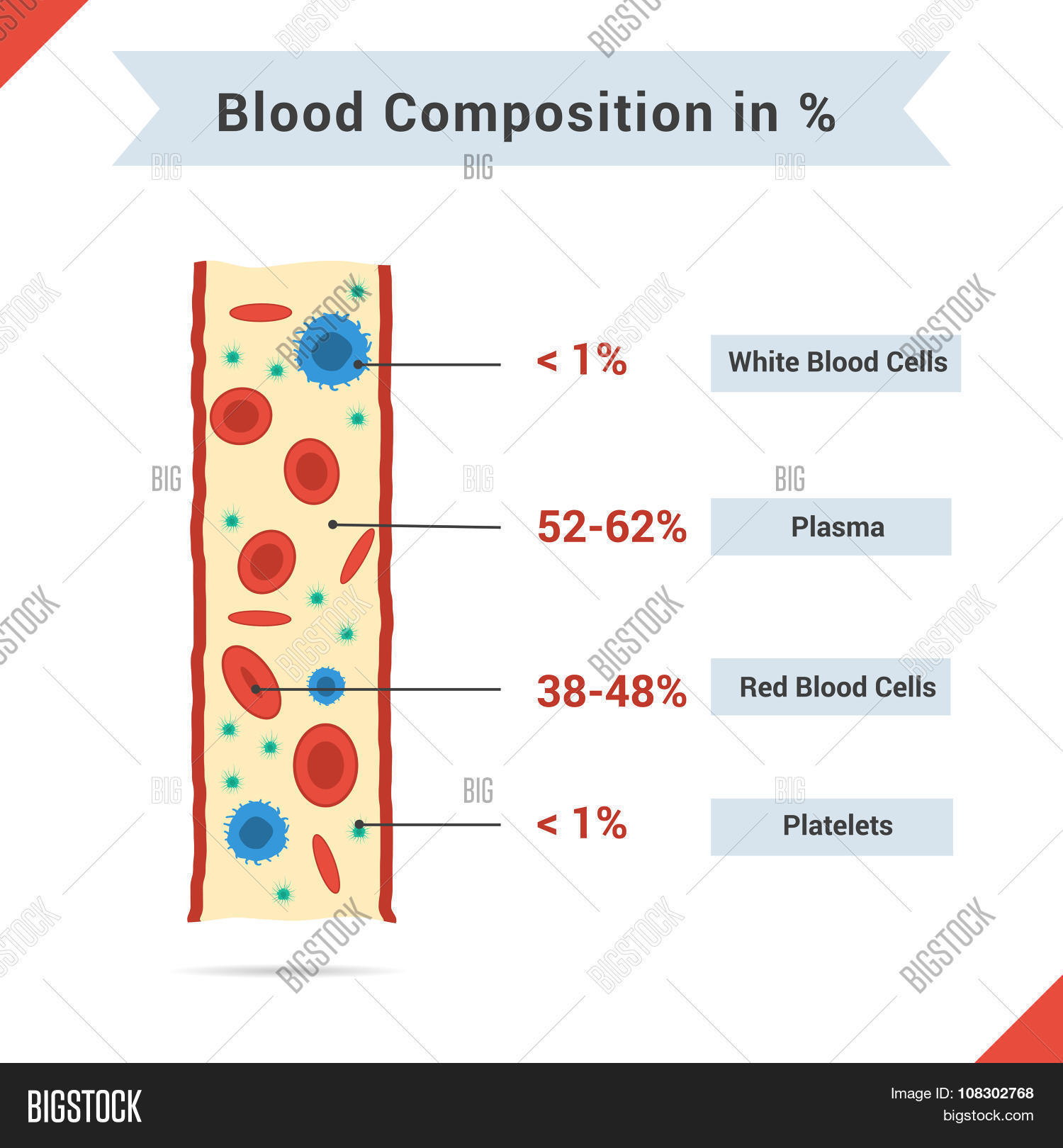 Composition Of Whole Blood Stock Vector & Stock Photos.