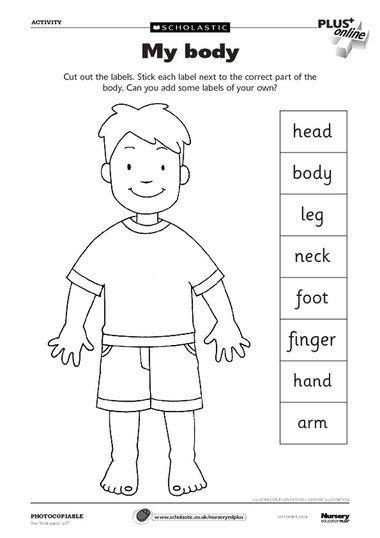 17 Best ideas about Body Parts Preschool on Pinterest.