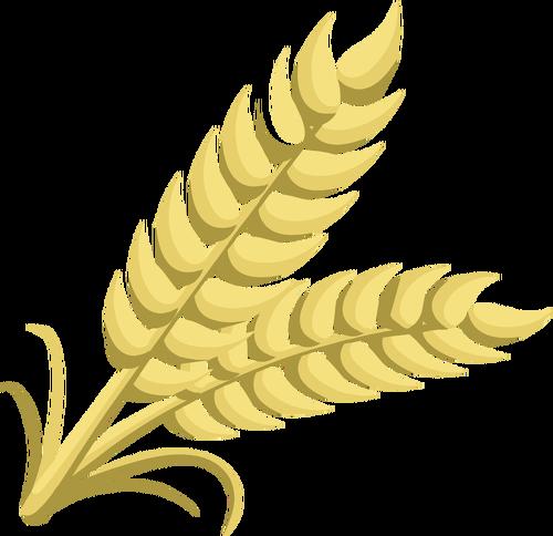 Whole grain.