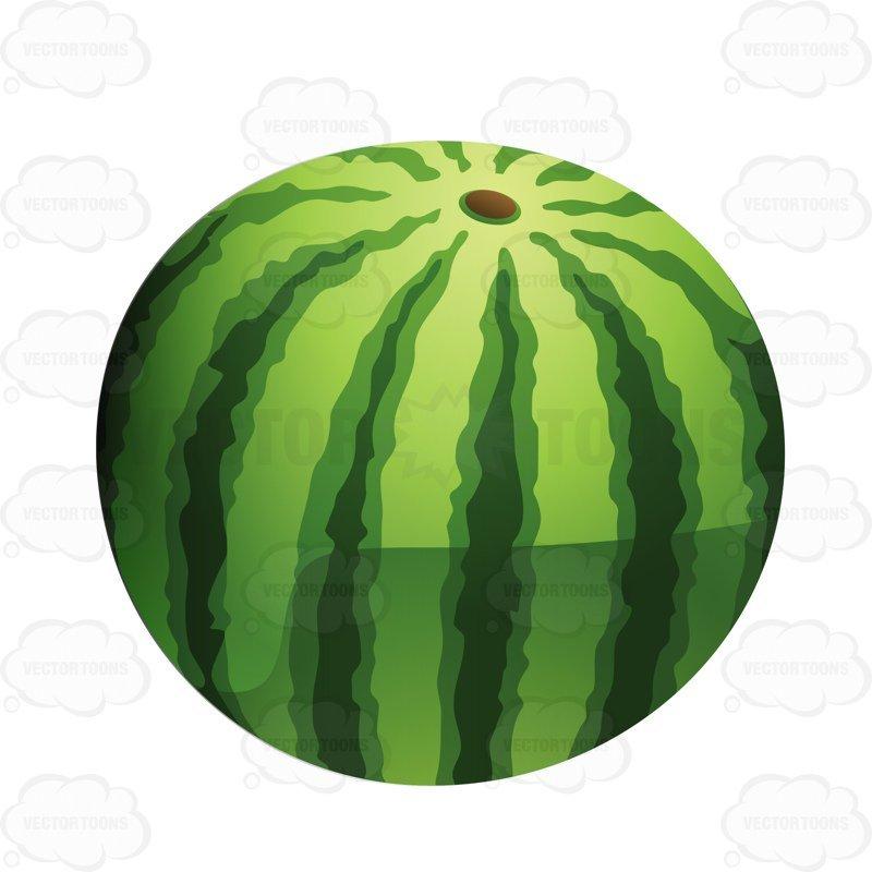 Whole watermelon clipart » Clipart Portal.