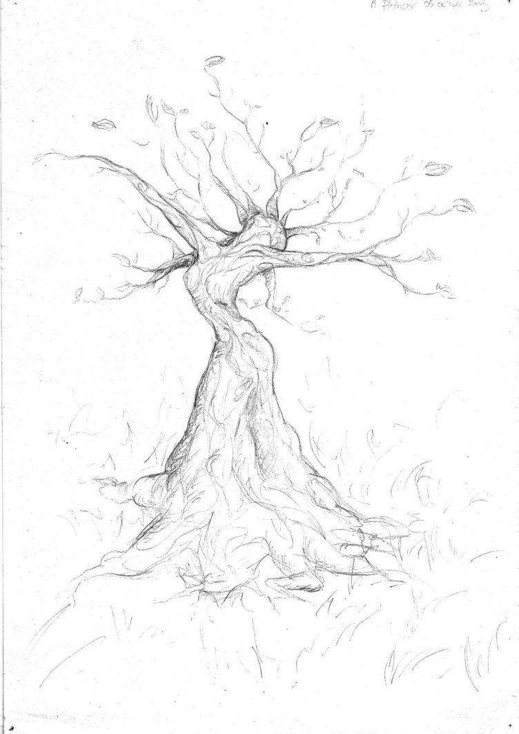 Woman Tree by Rachpunzel … in 2019.