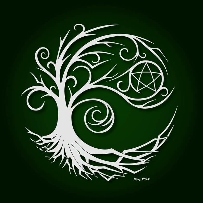 Pentacle in tree.