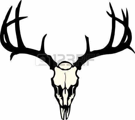 Collection of Antlers clipart.