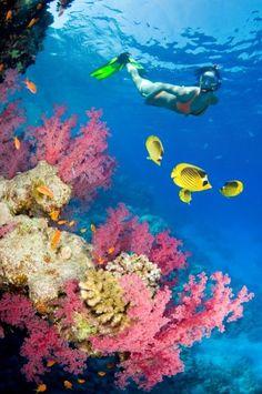 Beaches, Islands and Cayman islands on Pinterest.