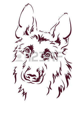 Wolf Eyes Stock Vector Illustration And Royalty Free Wolf Eyes.