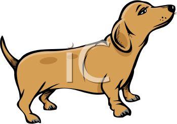 Wiener Dog Pup.