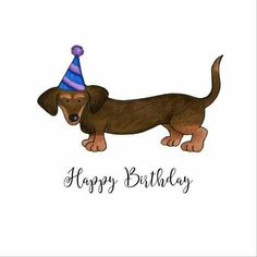 22 Best Happy Birthday Dachshund images.