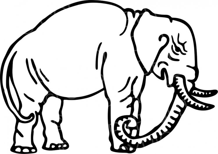 Wild Animals Clipart Black And White.