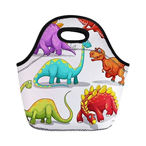 Amazon.com: Semtomn Lunch Tote Bag Animal Different of.