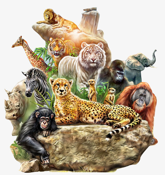 Wild Animals Clipart Png.
