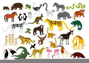 Wild Animal Clipart.