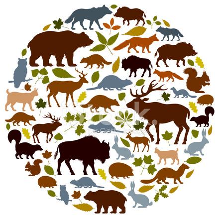Wild Animals Icon Collage Stock Vector.