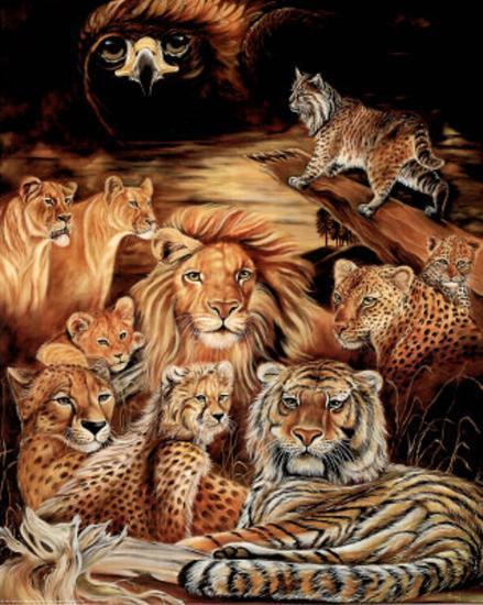 Wild Cat (Montage) Art Print Poster.