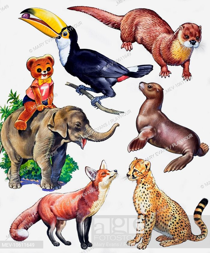 Animal montage. From Teddy Bear Annual, Stock Photo, Picture.