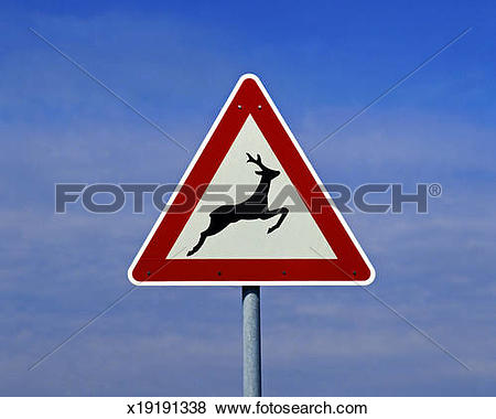 Pictures of road sign, wild animal crossing x19191338.