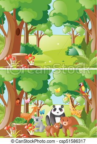 Forest scenes with wild animals.