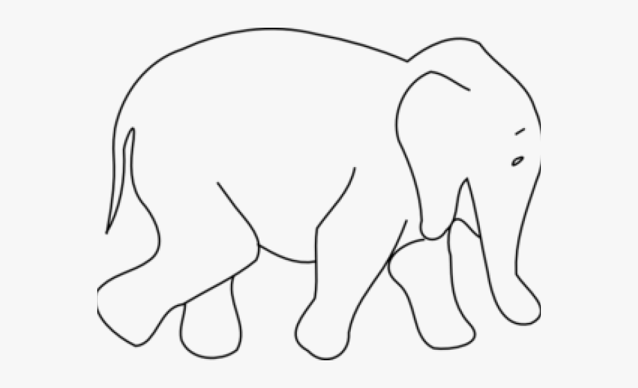 Wild Animals Outline , Transparent Cartoon, Free Cliparts.