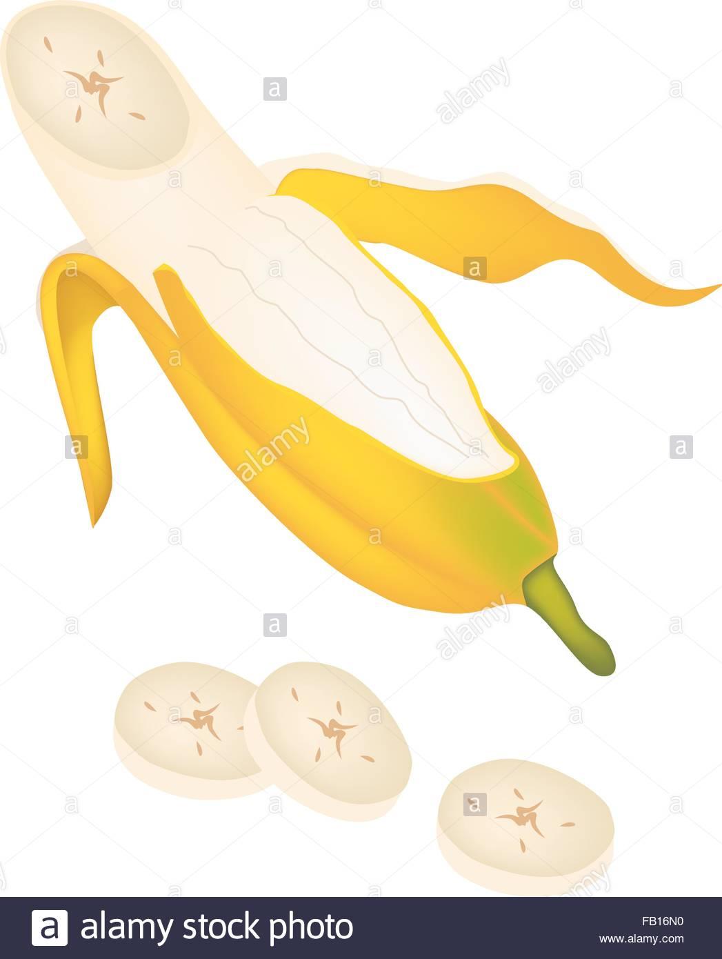 Fruit, An Illustration Of Open Wild Banana, Asian Banana Or Stock.
