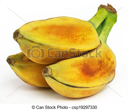 Stock Photos of Wild banana of Southeast Asia.