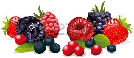 4,466 Wild Berry Cliparts, Stock Vector And Royalty Free Wild.